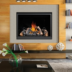 Napoleon High Definition 46 Direct Vent Gas Fireplace