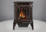 Napoleon Arlington Direct Vent Cast Iron Gas Stove -Porcelain Majolica Brown-NG