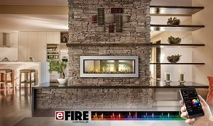 Napoleon Vector 50 Linear Direct-Vent Gas Fireplace LV50N-2